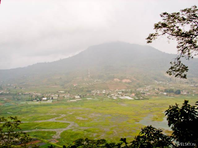 Вершины в центре острова