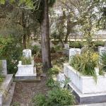 Неожиданные кладбища