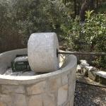 Агрегат для производства оливкового масла